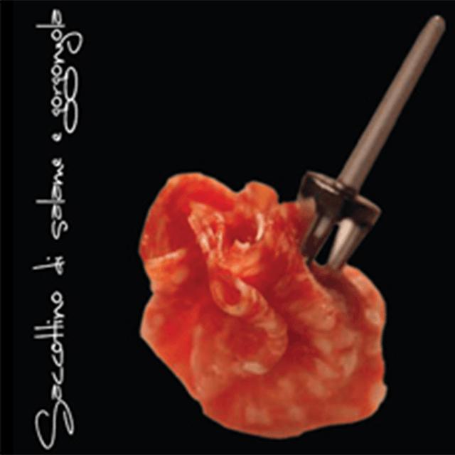 Saccottino di salame e gorgonzola